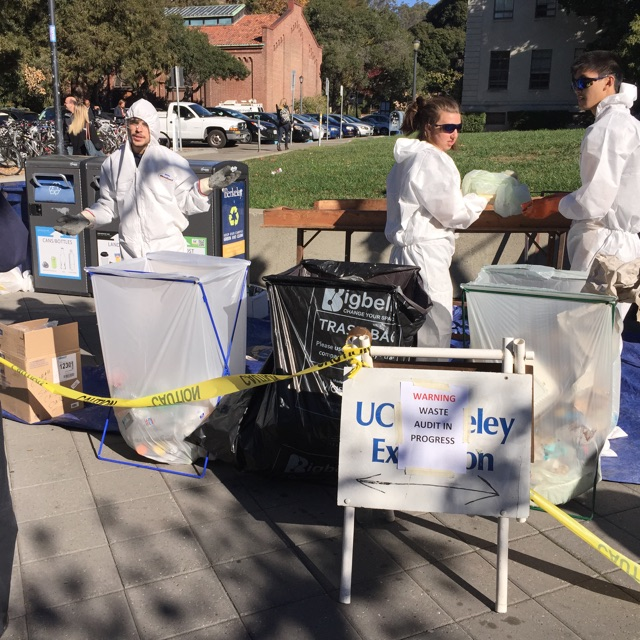 Waste Audit in Progress at University of California, Berkeley