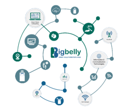 Bigbelly-IoT-Graphic-Highlights